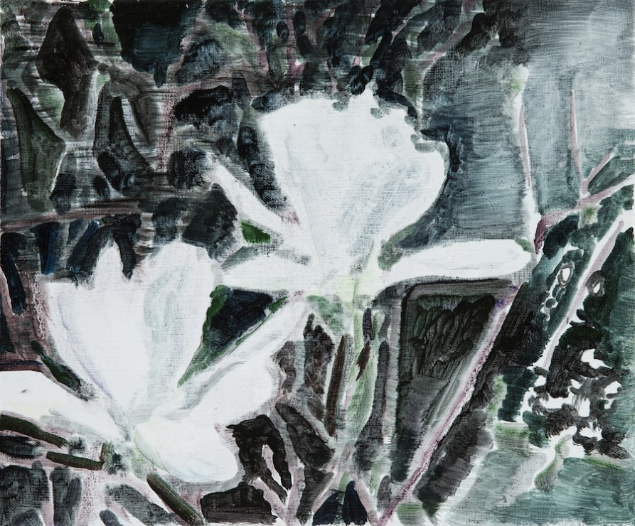 Magnolia, oil on canvas, 25x30, 2017
