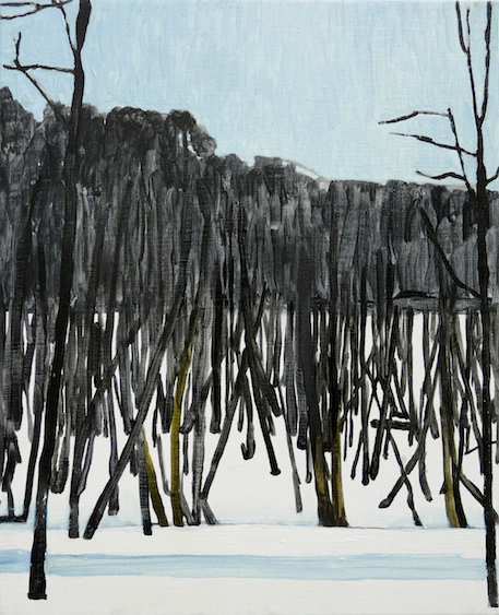Trees, oil on canvas, 41x35, 2013